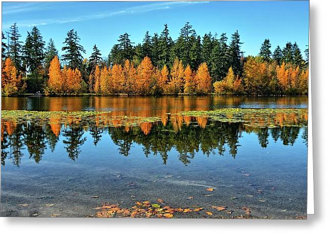 Fall On Wapato Greeting Card by Tim Coleman