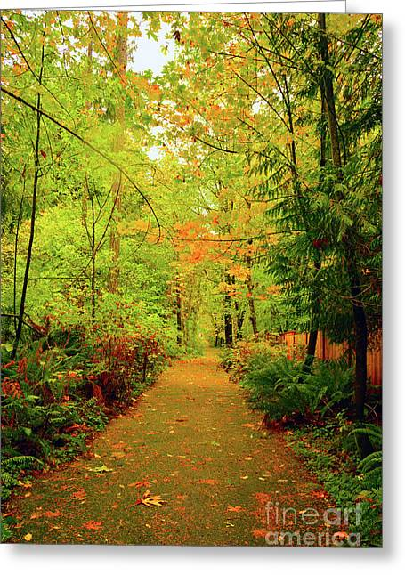 Fall Path Too Greeting Card