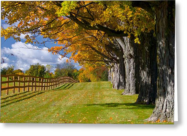 Fall Perspective Greeting Card