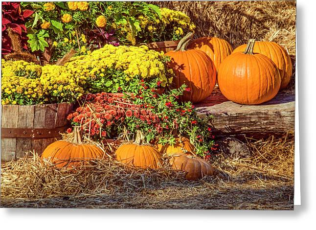 Greeting Card featuring the photograph Fall Pumpkins by Carolyn Marshall