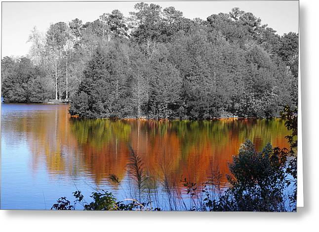 Fall Reflection Greeting Card by Don Prioleau
