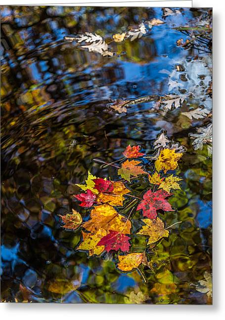 Fall Reflection - Pisgah National Forest Greeting Card