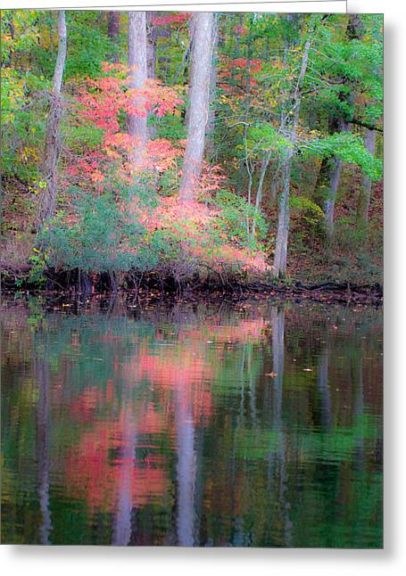 Greeting Card featuring the photograph Fall Reflections by Bob Decker