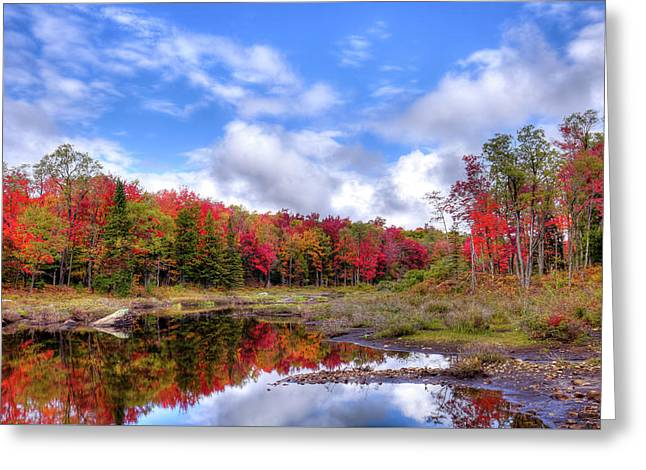 Fall Reflections In The Adirondacks Greeting Card by David Patterson