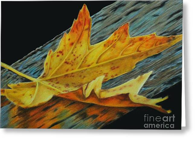 Fall Reflections Greeting Card
