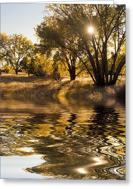 Fall Colors Greeting Cards - Fall Reflections Greeting Card by Jerry McElroy
