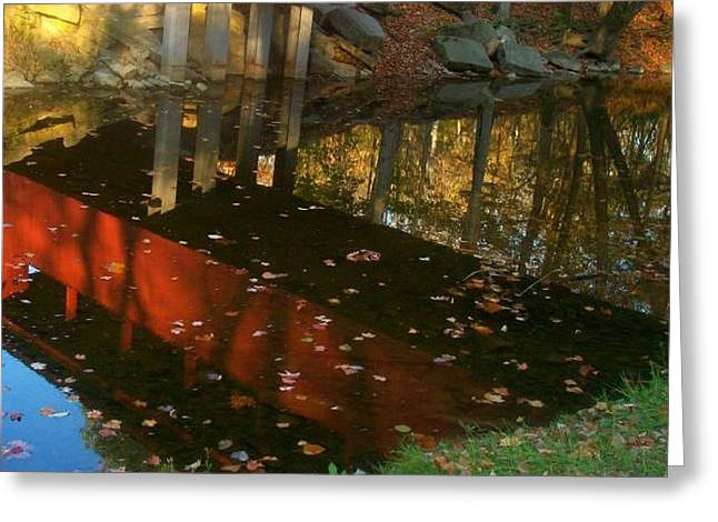 Fall Reflections Greeting Card by Rachel Minniear