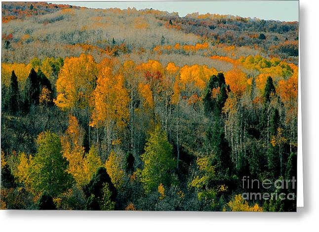Fall Ridge Greeting Card by David Lee Thompson