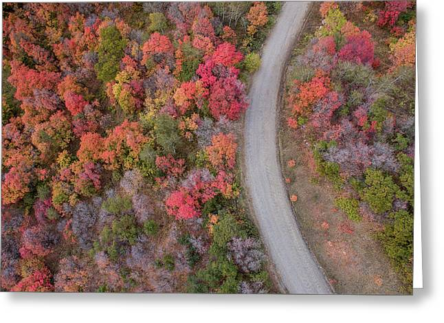 Fall Road Greeting Card