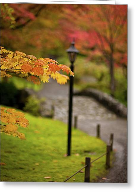 Fall Serenity Greeting Card by Mike Reid