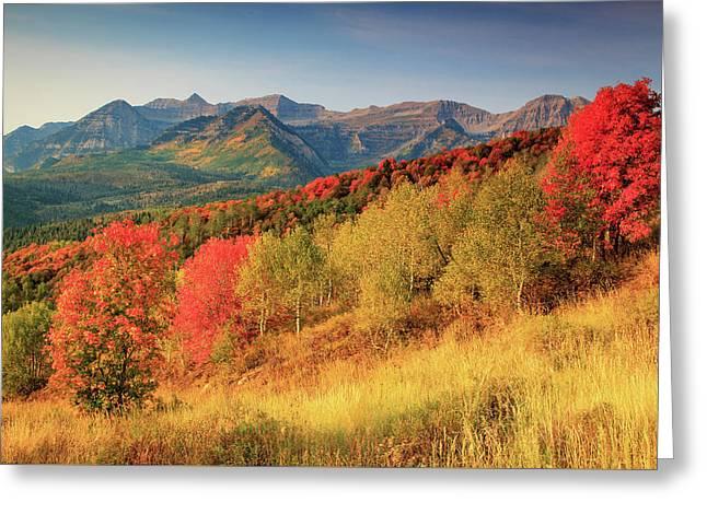 Fall Splendor With Mount Timpanogos. Greeting Card