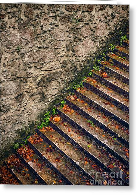 Fall Stairway Greeting Card by Carlos Caetano