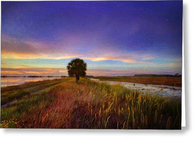 Fall Sunrise - In The Marshes Of St. Marks Greeting Card by Kathryn  Stivers