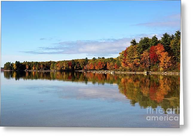 Fall Tree Reflections Lake Sabago Maine Greeting Card