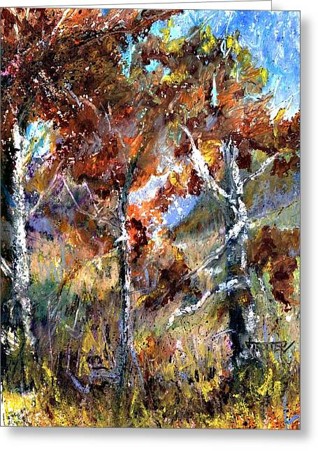 Fall Trees Greeting Card by Jimmie Trotter