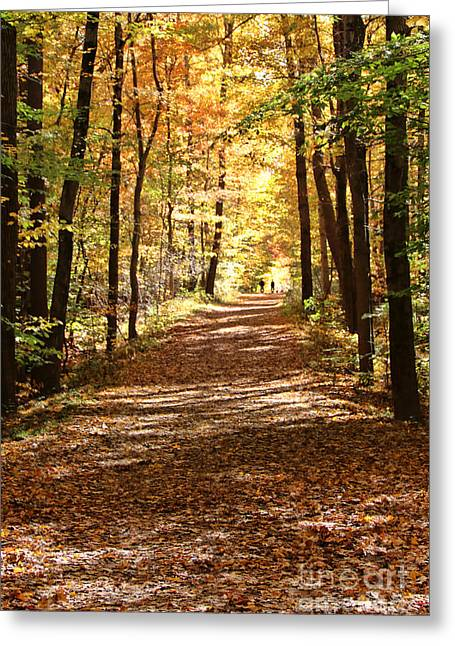 Fall Walk   2295 Greeting Card by Jack Schultz