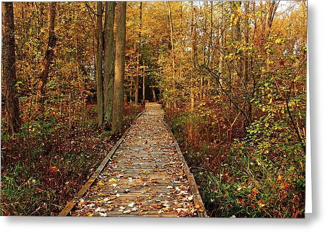Fall Walk Greeting Card