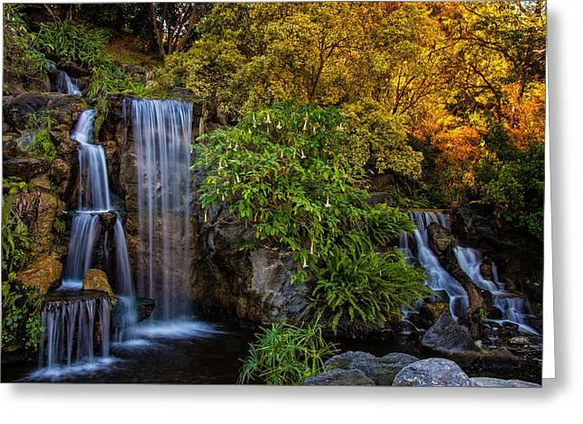 Greeting Card featuring the photograph Fall Water Fall by Harry Spitz