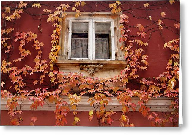 Fall Window,prague Greeting Card