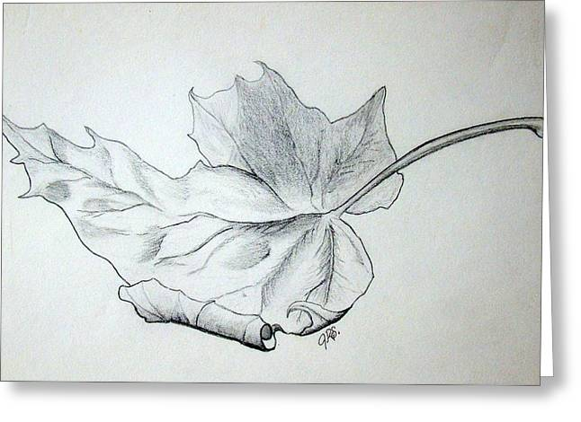 Fallen Leaf Greeting Card by J R Seymour