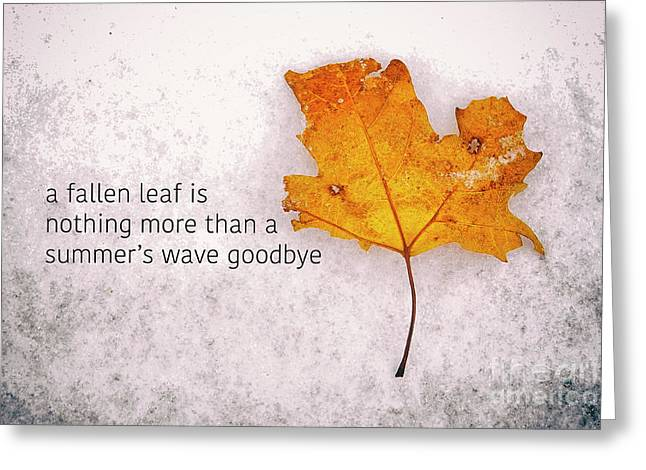 Fallen Leaf On Dirty Ice With Quote Greeting Card