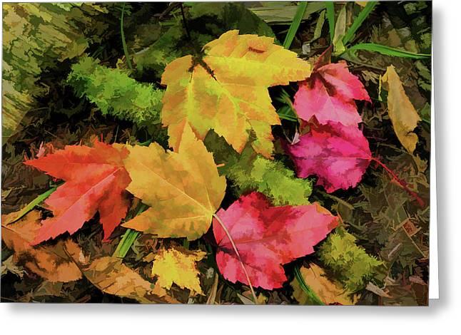 Fallen Leaves Greeting Card by Janet Ballard