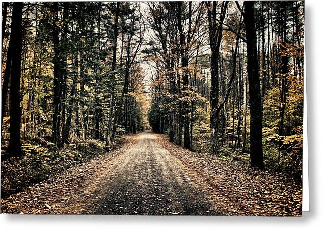 Fallen Road Greeting Card by Nathan Larson