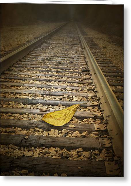 Fallen Yellow Autumn Leaf On The Railroad Tracks Greeting Card by Randall Nyhof