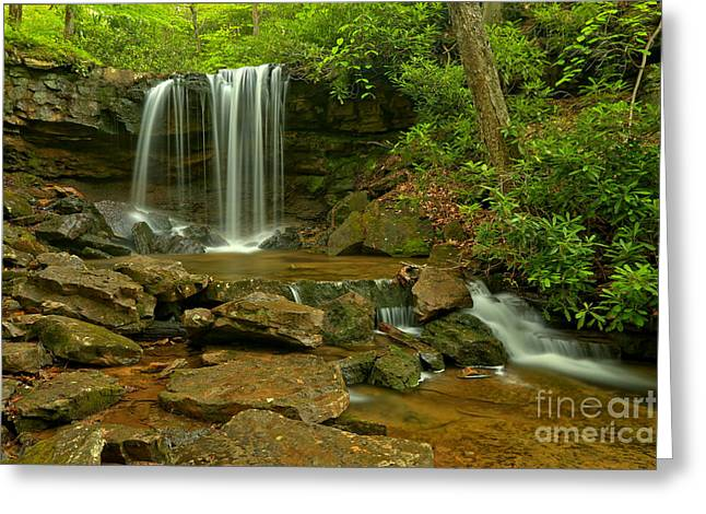 Falling And Streaming Greeting Card by Adam Jewell
