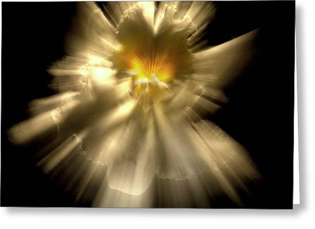Falling Angel Greeting Card by Frederic A Reinecke