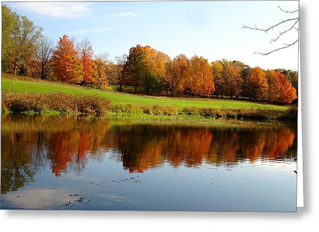 Falling Color  Greeting Card