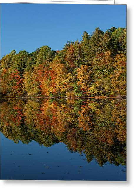 Falling Into The Reflection Greeting Card by Karol Livote