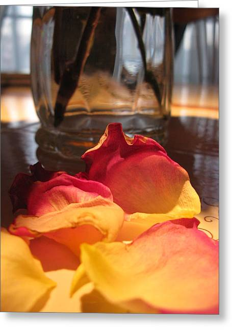 Falling Petals Greeting Card by Lisa Barr