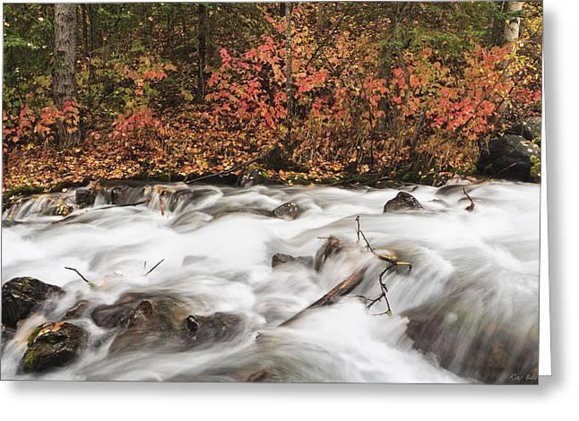 Falling Water Creek Autumn Greeting Card