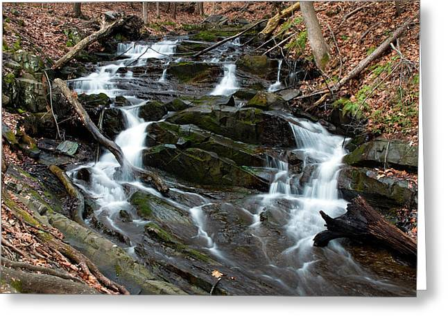 Falling Waters In February Greeting Card by Jeff Severson