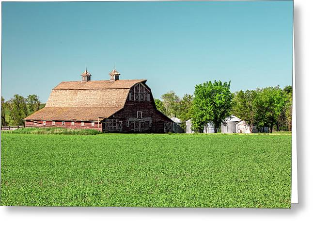 Fallon County Farm Greeting Card by Todd Klassy