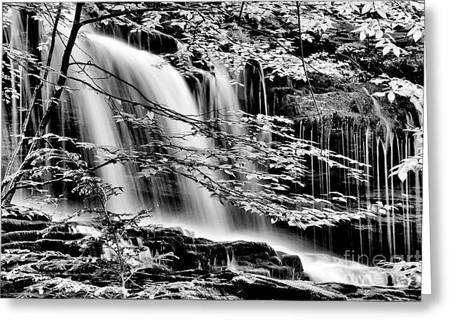 Falls And Trees Greeting Card by Paul W Faust - Impressions of Light
