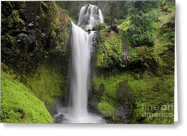 Falls Creek Falls In Washington  Greeting Card