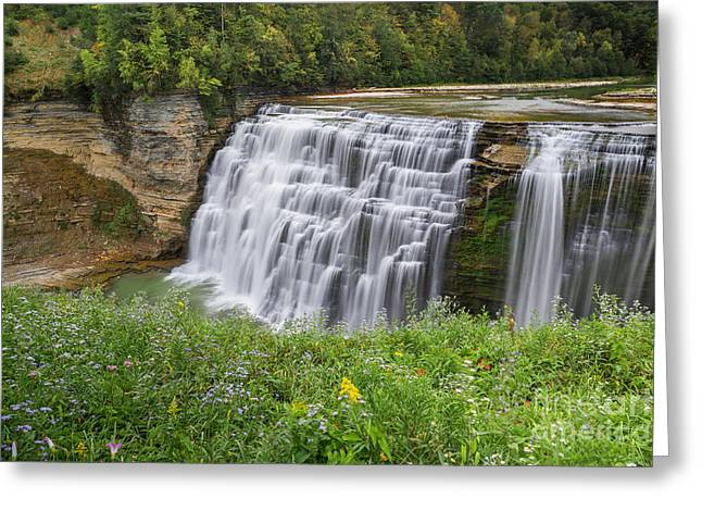 Autumn Flower Of Letchworth Middle Falls Greeting Card