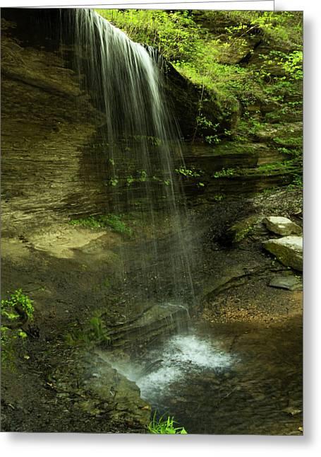 Falls In Spring Greeting Card by Pamela Peters