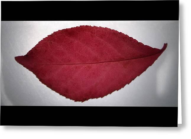 Fall's Kiss Greeting Card