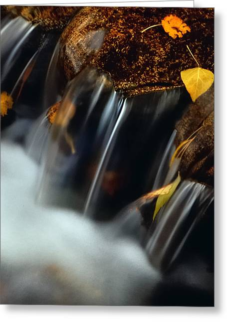 Falls Of Autumn Greeting Card by Steven Milner