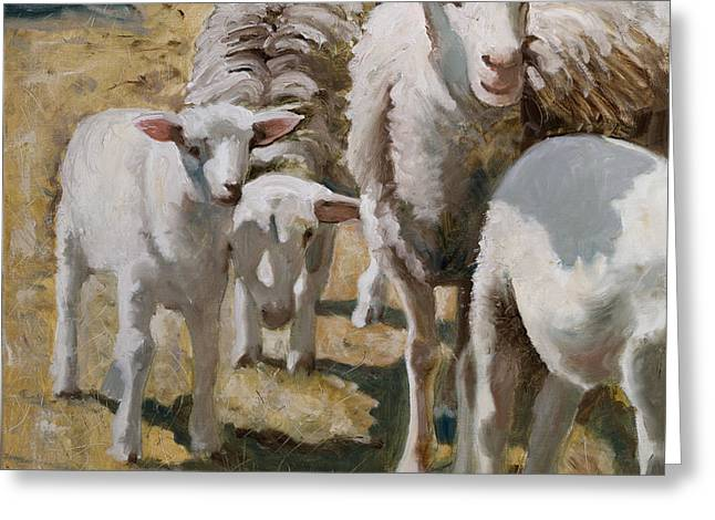 Family Of Sheep Greeting Card