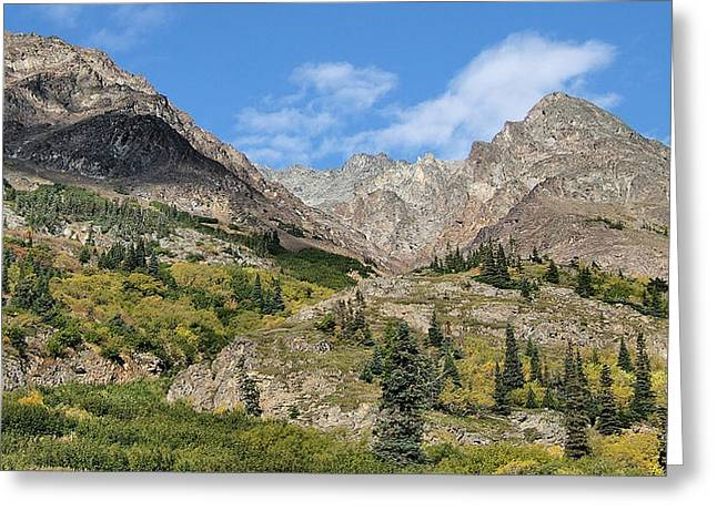 Famous White Pass Summit Greeting Card by Dennis Stein