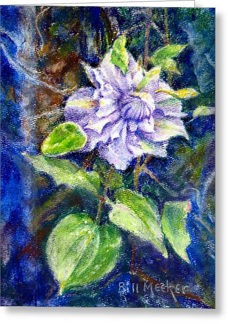 Fancy Clematis Greeting Card by Bill Meeker