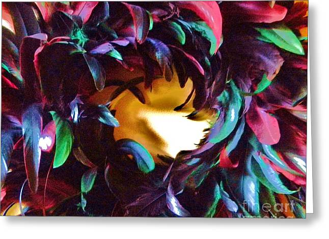 Fancy Feathers Greeting Card by Leslie Revels Andrews