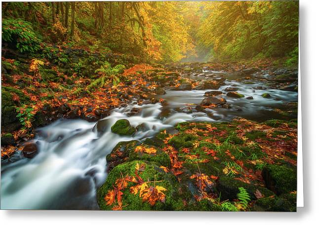 Fantasies Of Fall Greeting Card by Darren White