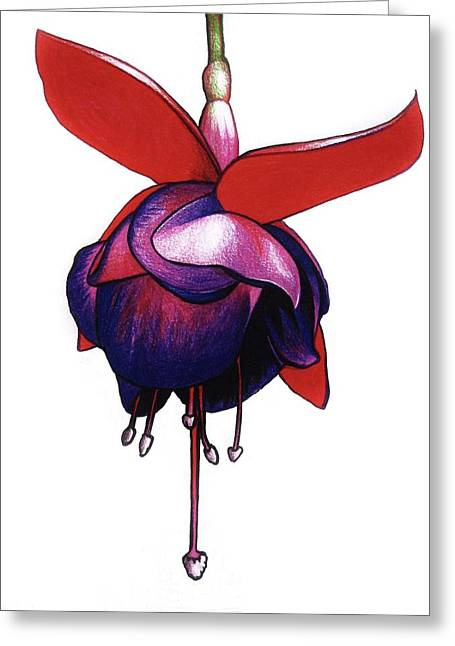 Fantastic Fuchsia Greeting Card