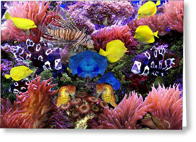Fantasy Aquarium Greeting Card