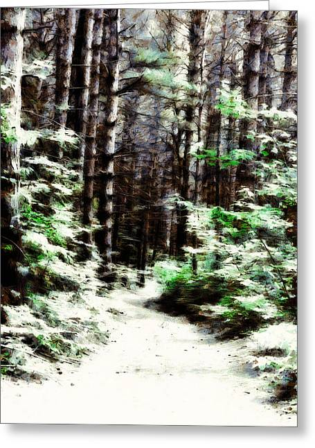 Fantasy Forest Greeting Card